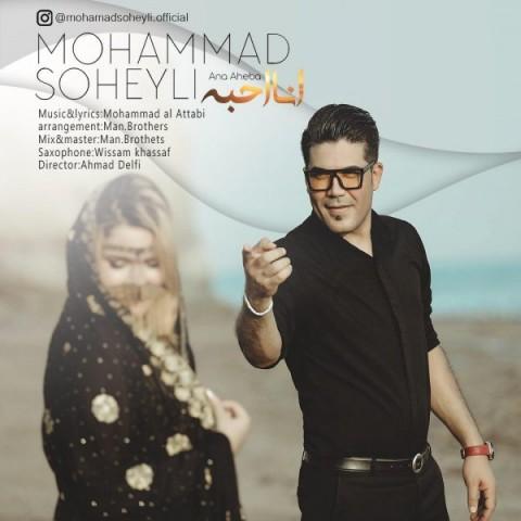 دانلود آهنگ جدید محمد سهیلى انا احبه