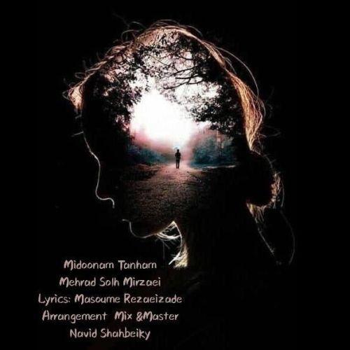 دانلود آهنگ جدید مهراد صلح میرزایی میدونم تنهام