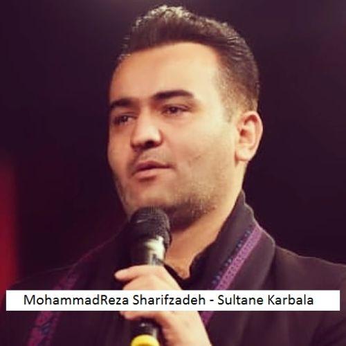 دانلود آهنگ جدید محمدرضا شریف زاده سلطان کربلا